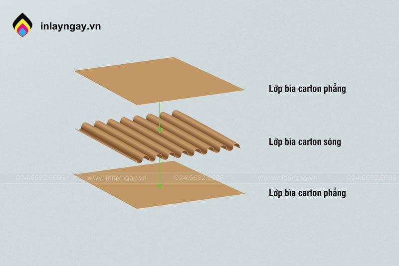 Phân biệt carton phẳng và carton ghép